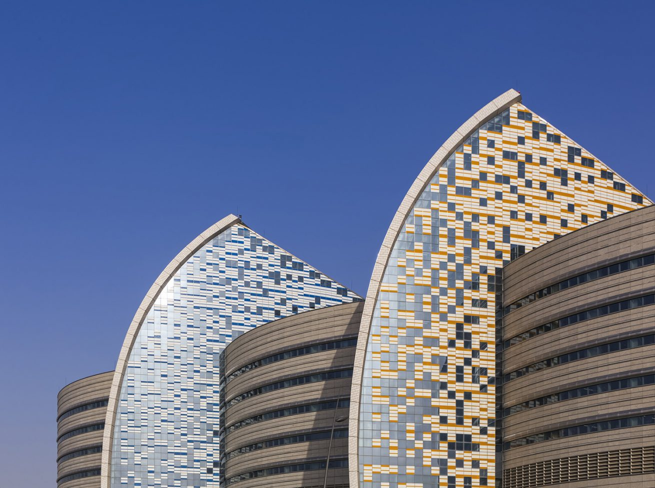 Sidra Medical and Research Centre – 2
